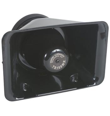 TS100 PA Speaker | 100W, Internal/External